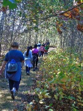 woods tour